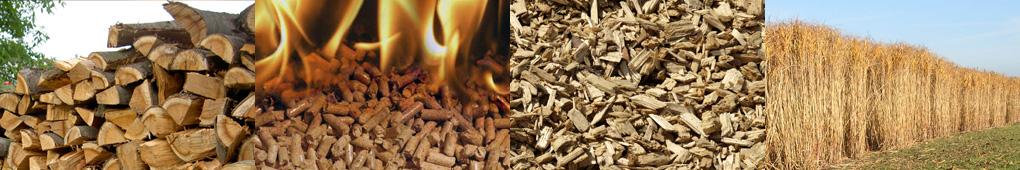 biomass_header